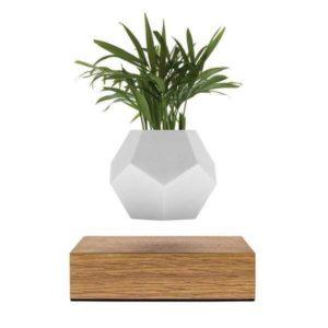 Flyte Lyfe Vase Flottant
