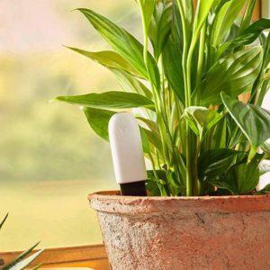 Capteur bluetooth pour plantes