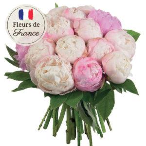 Bouquet de 15 pivoines